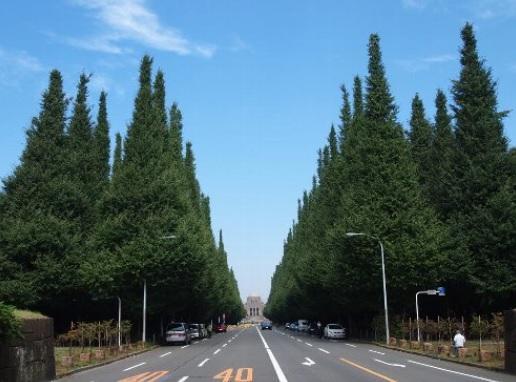 渋谷区の外苑前近くの税理士は匠税理士事務所.jpg